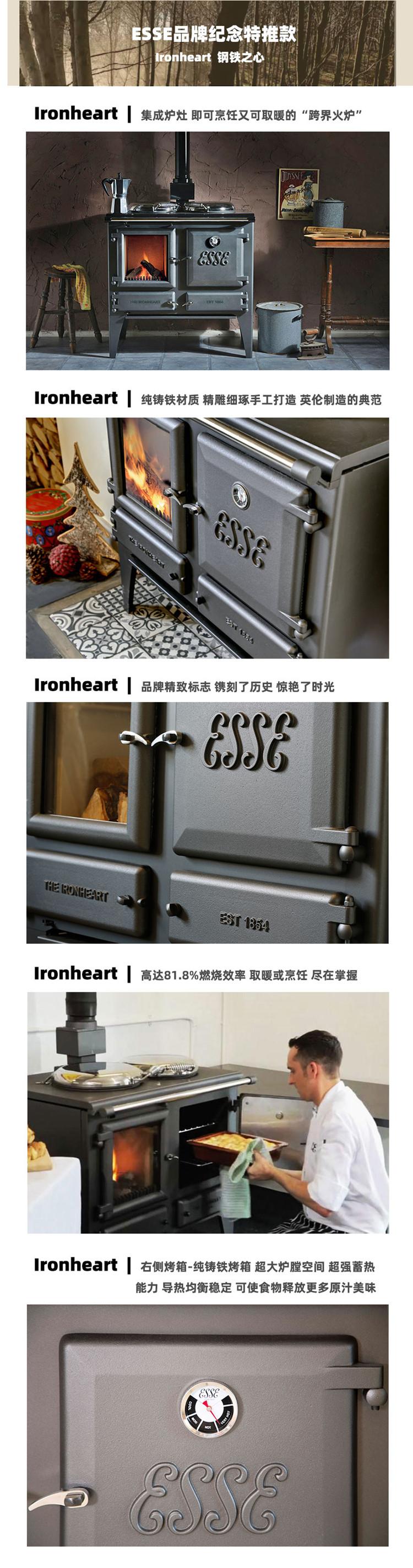 英国进口可做饭真火壁炉品牌-Esse-Ironheart.jpg