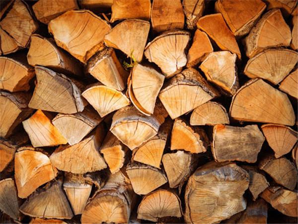 使用干燥的壁炉木柴.jpg